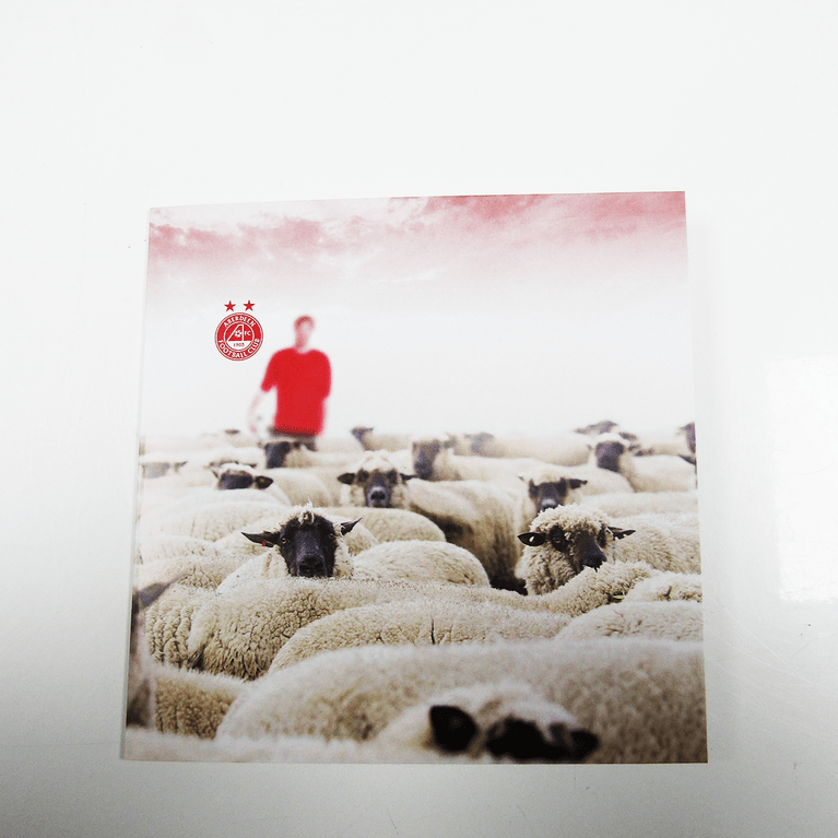 HERD OF SHEEP CARD